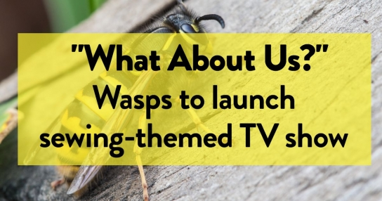 """What about us?"" Wasps to launch sewing-themed TV show"