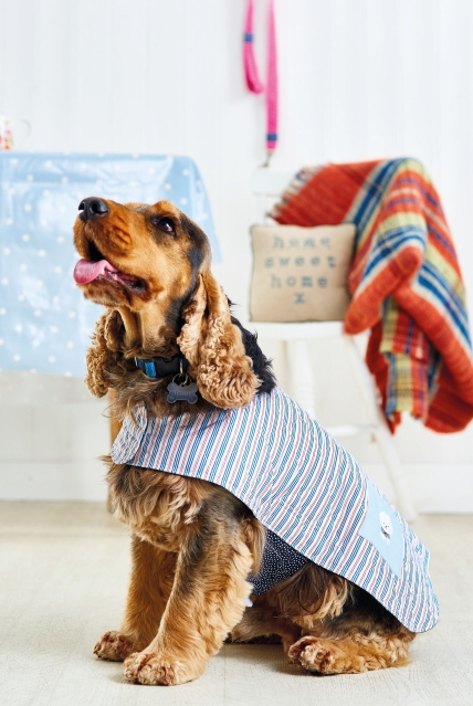 Easy Dog Coat